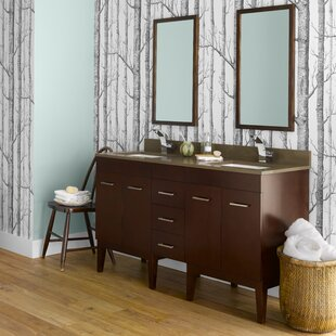 Venus 59 Double Bathroom Vanity Set by Ronbow