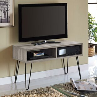 Acevedo TV Stand For TVs Up To 42