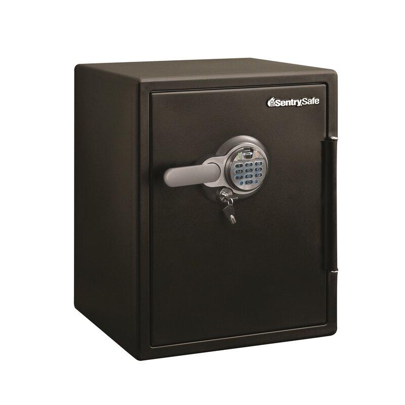 Sentrysafe Security Safe With Biometric Lock Wayfair