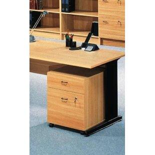 Ellzey 2-Drawer Mobile Vertical Filing Cabinet by Rebrilliant