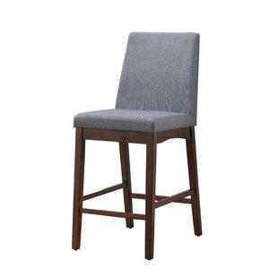 Brayden Studio Favorinus Dinings Chair (Set of 2)