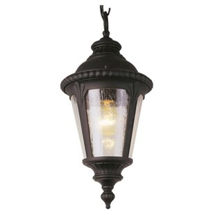 Big Save Hinckley 1-Light Outdoor Hanging Lantern By Fleur De Lis Living