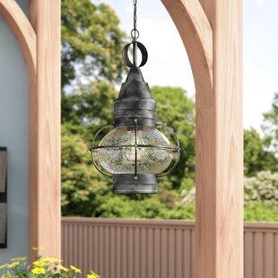 Laurel Foundry Modern Farmhouse Fallsburg 1-Light Outdoor Hanging Lantern