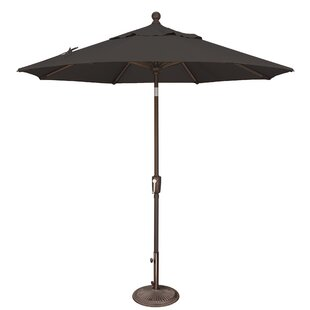 Launceston 7.5' Market Umbrella By Sol 72 Outdoor