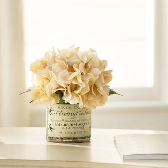 Hydrangea Floral Arrangement In French Labeled Pot Reviews Birch Lane