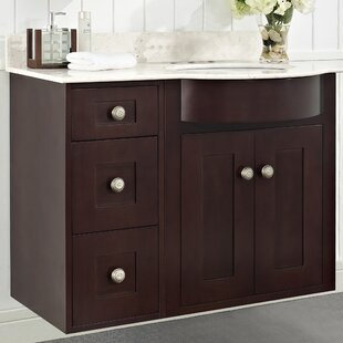 Kester Transitional 36 Bathroom Vanity By Darby Home Co