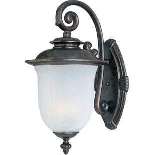 Best Deals Cambria 1-Light Outdoor Wall lantern By Darby Home Co