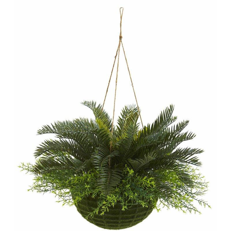 Charlton Home 13 Artificial Foliage Plant In Basket Wayfair