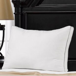 Alwyn Home 100% Cotton Mesh Gusseted Memory Fiber Pillow