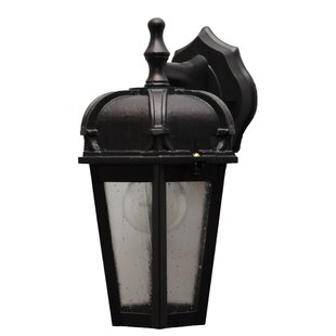 Charlton Home Flannigan Outdoor Wall Lantern