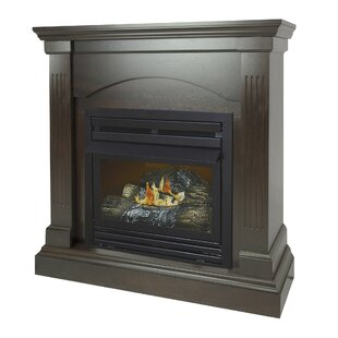 Shavonne Vent Free Fireplace By Darby Home Co