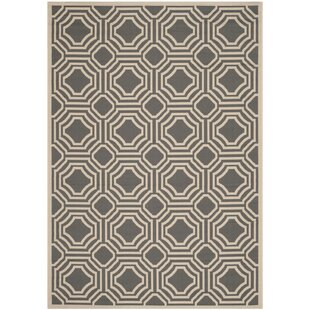Schaper Dark Gray/Beige Indoor/Outdoor Rug