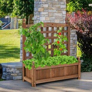 Tubbs Planter BoxWith Trellis Image
