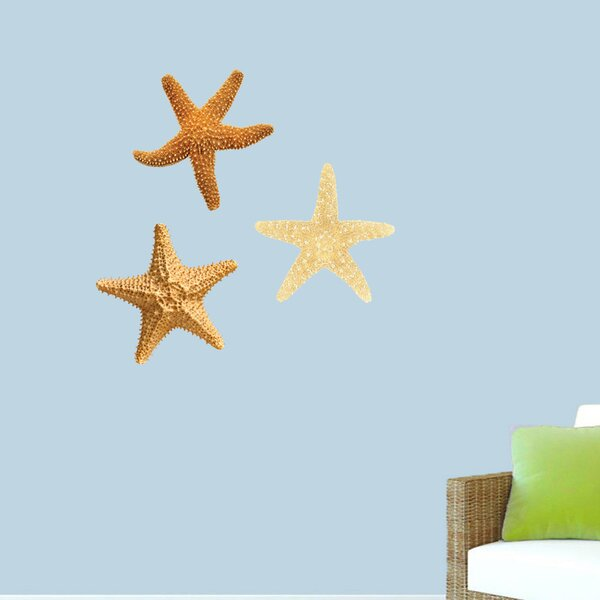 Starfish Decal Wayfair