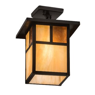 Alluvial 1-Light Semi Flush Mount by Bloomsbury Market