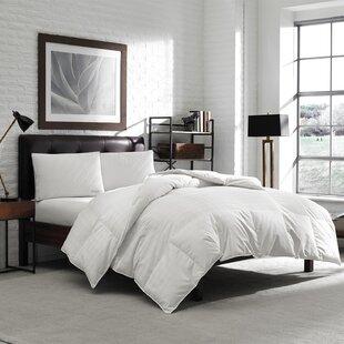 Oversized Down Comforter by Eddie Bauer