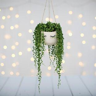 Eyes Shut Ceramic Hanging Basket Image