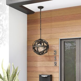 Reviews Stefanie 1-Light Outdoor Pendant By Trent Austin Design