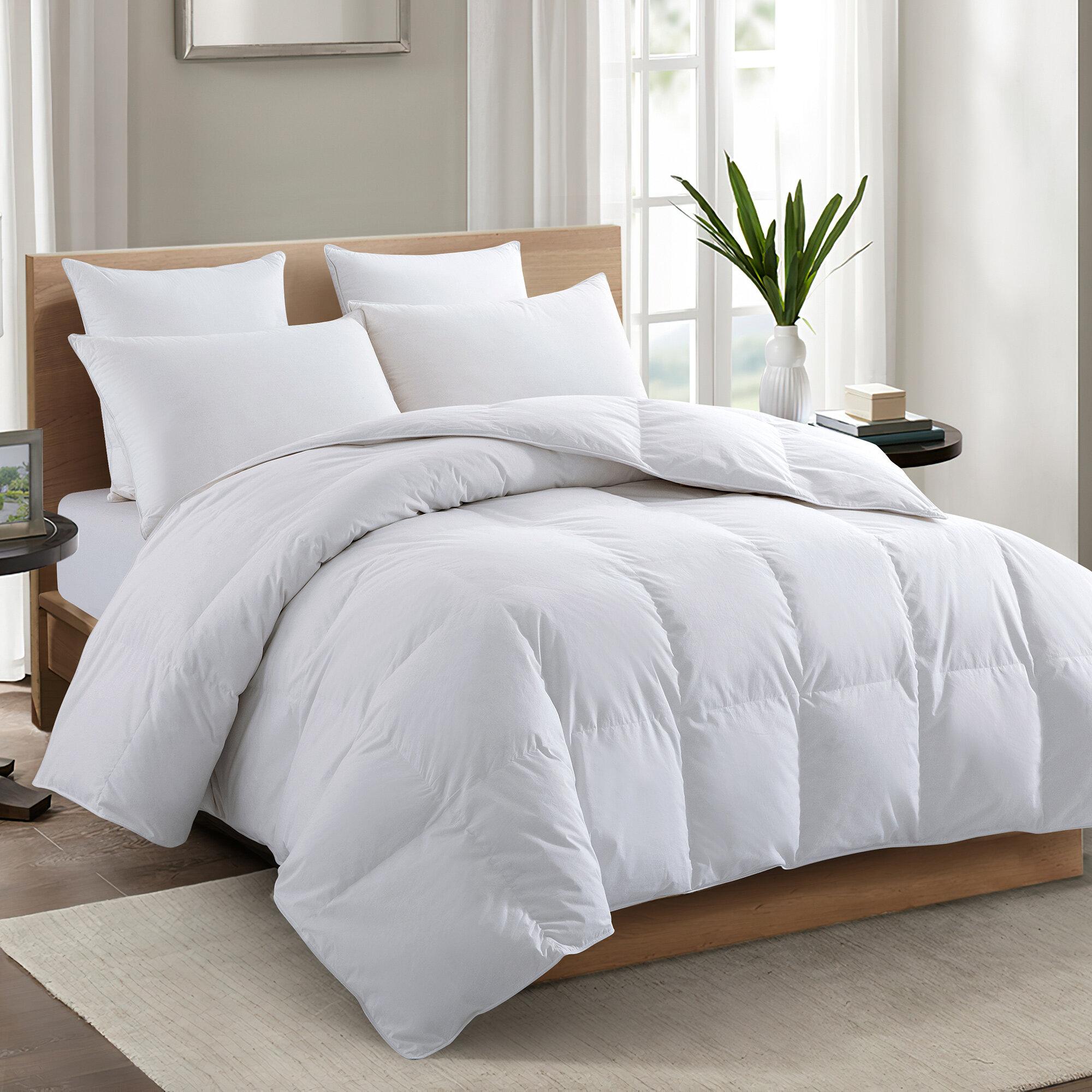 Eider Ivory 600 Fill Power All Season 75 White Down Comforter Reviews Wayfair