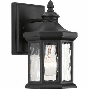 Enola 1 Light Outdoor Wall Lanter