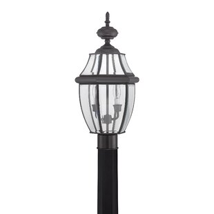 Outdoor 2-Light Lantern Head