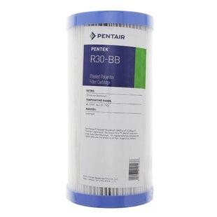 Pentek Pleated Polyester Water Filter