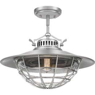 Breakwater Bay Schaible 1-Light Lantern Pendant