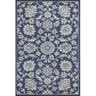 Hershel Denim Indoor/Outdoor Area Rug