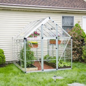 Snap U0026 Grow 6 Ft. W X 8 Ft. D Polycarbonate Greenhouse