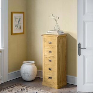 Nagle Narrow 5 Drawer Chest By Alpen Home