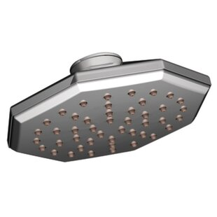 Moen Felicity Shower Head with Immersion