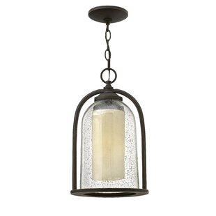 Check Prices Ardean 1-Light Outdoor Pendant By Darby Home Co