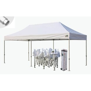 Eurmax Premium 10 Ft. W x 20 Ft. D Metal Pop-Up Party Tent