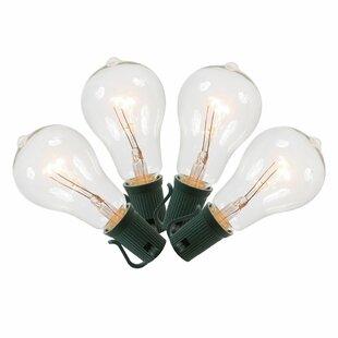 Vickerman 10-Light Globe String Lights