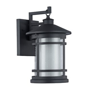 Helfer 1-Light Outdoor Wall Lantern by Latitude Run