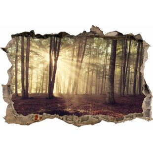 Forest Clearing In The Sunshine Wall Sticker By East Urban Home