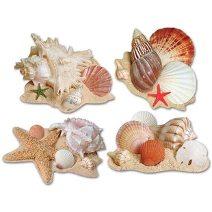 4 Piece Seashell Cutouts Wall Décor Set
