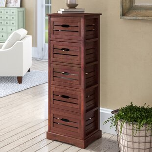 Regan 5 Drawer Accent Chest By Breakwater Bay