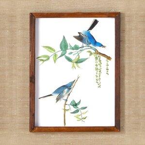 Birds Wall Art framed bird wall art | wayfair