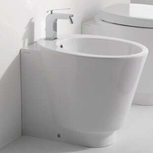 Scarabeo by Nameeks Wish 1.3 GPF Elongated Toilet Bowl