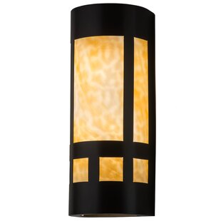 Meyda Tiffany 2-Light Outdoor Flush Mount