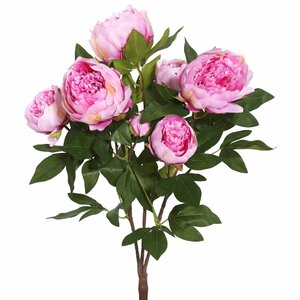 Peony Bush Stem (Set of 6)