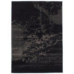 Duchene Black/Gray Area Rug ByWilliston Forge