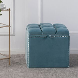 Eloisa Storage Ottoman by House of Hampton