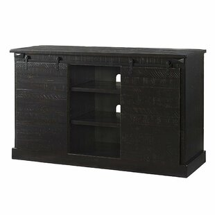 Rogers Wooden Sliding Door 60 TV Stand by Loon Peak