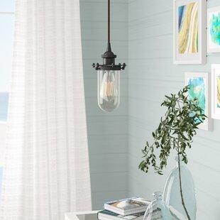 Narvaez 1-Light Jar Pendant by Beachcrest Home