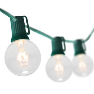 Wintergreen Lighting 50-Li..