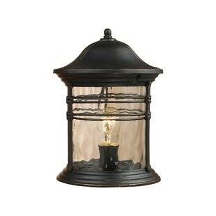 Creger Outdoor 1-Light Lantern Head by Breakwater Bay