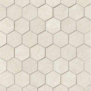 El Dorado 2 X Porcelain Hexagon Mosaic Tile In Shell