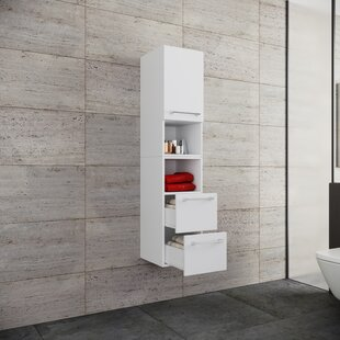 Mcmaster 33 X 150cm Wall Mounted Cabinet By Mercury Row
